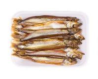 Geräucherte Fische Stockbild