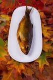 Geräucherte Fische auf einer Platte Stockbilder