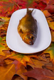 Geräucherte Fische auf einer Platte Lizenzfreies Stockbild
