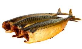 Geräucherte Fische getrennt lizenzfreie stockfotos