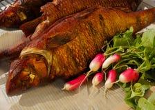 Geräucherte Fische mit jungem Rettich und Petersilie lizenzfreie stockfotografie