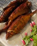 Geräucherte Fische mit jungem Rettich und Petersilie lizenzfreies stockfoto