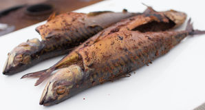Geräucherte Makrele Lizenzfreies Stockfoto