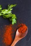 Geräucherter süßer spanischer Paprika stockbild
