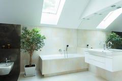 Geräumiges Badezimmer in den neutralen Farben Stockfotografie