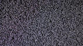 Geräuschfernsehhintergrund Fernsehschirm mit dem Störgeräusch verursacht durch schlechte Signalaufnahme Fernsehschirm mit statisc stock video footage