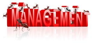 A gerência controla a organização organiza ilustração royalty free