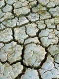 Geröstete Erde stockfoto