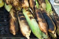 Gerösteter Mais lizenzfreie stockfotografie