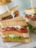 Geröstetes dreifaches Decker-Club Sandwich mit Fischrogen lizenzfreie stockfotos