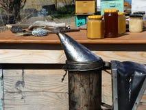 Gerüche für Bienenstock stock video footage