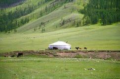 ger阵营在Ulaanbaatar的,蒙古Gorkhi-Terelj国家公园 库存图片