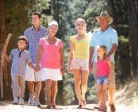 Geração 3 em uma caminhada do país da família Imagem de Stock Royalty Free