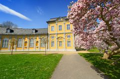 Gera. Baroque building in the city of Gera with magnolia tree and blossoms Royalty Free Stock Images