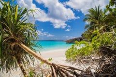 Geraakt tropisch strand in similan eiland Royalty-vrije Stock Foto
