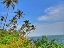 Gerade die tropischen Schwingungen stockfotografie