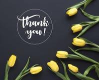 Gerade ein geregnet ` Danken Ihnen! ` geschrieben in kalligraphische Art Das Feld, das von der gelben Tulpe gemacht wird, blüht a vektor abbildung