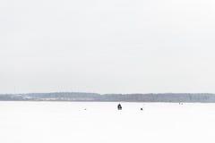 Gerade liegt aufgefangenes zander auf Eis Stockfotografie