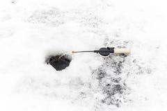 Gerade liegt aufgefangenes zander auf Eis Lizenzfreie Stockfotografie