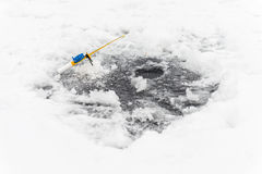 Gerade liegt aufgefangenes zander auf Eis Stockbilder