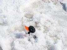 Gerade liegt aufgefangenes zander auf Eis Stockbild