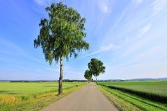 Gerade Straße auf dem Weizengebiet Stockfoto