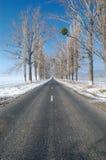 Gerade Straße des Winters Lizenzfreies Stockfoto