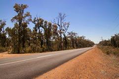 Gerade Straße, die in den Abstand durch gebrannte wilde Landschaft verschwindet Lizenzfreie Stockbilder