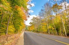 Gerade Straße im Herbst Stockfotografie