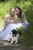 Gerade verheiratete lesbische Paare mit Hund im Wald Stockbild
