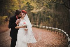 Gerade verheiratetes Paar, das in einem Herbstpark aufwirft Stockfotos