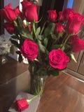 Gerade weil rote Rosen Stockfotos