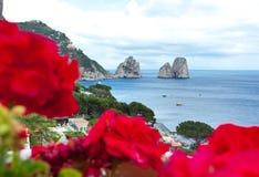 Geranios rojos con Faraglioni en el fondo, isla de Capri Imagenes de archivo
