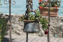 Geranium in de oude hangende pot royalty-vrije stock afbeelding