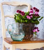 Geranium and a jug of water. Still Life with geranium and a jug of water Stock Photos