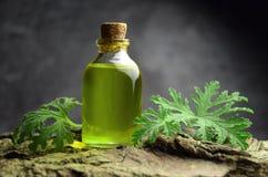 Geranium oil aromatherapy bio organic SPA. Alternative medicine royalty free stock photos