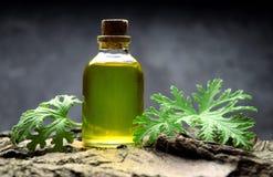Geranium oil aromatherapy bio organic SPA. Alternative medicine stock image