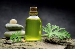 Geranium oil aromatherapy bio organic SPA. Alternative medicine royalty free stock image