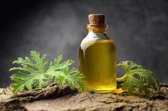 Geranium oil aromatherapy bio organic SPA royalty free stock photo