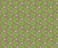 Geranium pattern Stock Image