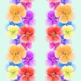 Geranium, pelargonium. Seamless pattern texture of flowers. Flor Royalty Free Stock Photo