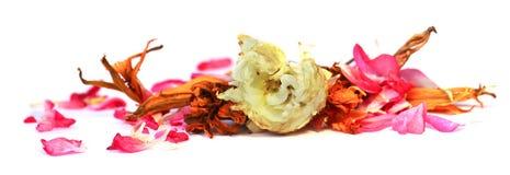 Geranium, petunia, dry delicate flowers, leaves and petals of pr Stock Photo