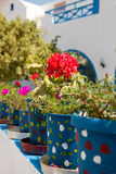 Geranium pots, Santorini, Greece Stock Images