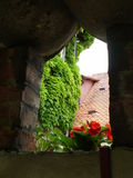 Geraniums in a stone window, Croatia Stock Images