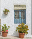 Geraniums. Are a typical Andalusian patio Royalty Free Stock Photography