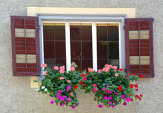 Geraniums in window box Royalty Free Stock Photography
