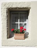 Geraniums at the window Royalty Free Stock Images