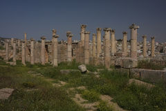 Gerasa ruins, Jerash, Jordan. Jerash is the site of the ruins of the Greco-Roman city of Gerasa Royalty Free Stock Image