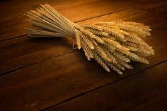 Gerbe de blé Image libre de droits