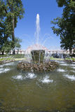 Gerbe de fontaine dans Pertergof, St Petersburg, Russie Image libre de droits